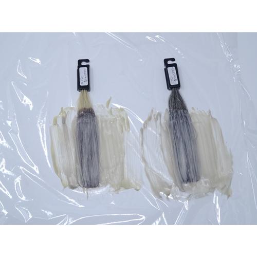 ビゲン 香りのヘアカラー 薬剤塗布