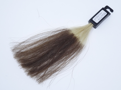 シュワルツコフ カラースペシャリスト 白髪100 染め後