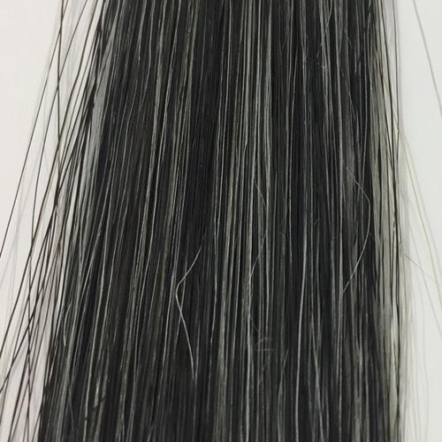 サロンドプロ グレイッシュ 白髪50 染め15回