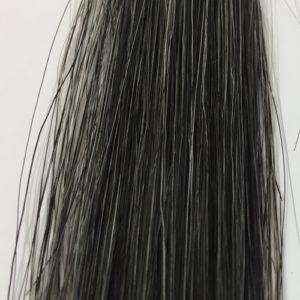 利尻カラーシャンプー 白髪50% 15回後の染まり