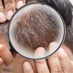 数本だけ生えてる白髪はどう染めるべき?